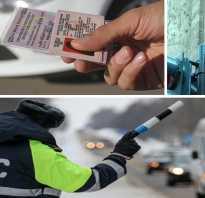 Законопроект о досрочном возврате водительских прав