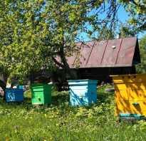 Пчеловодство мастер класс