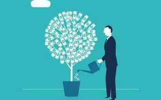 Формула коэффициент инвестирования