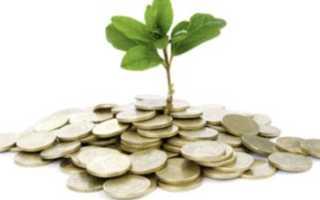 Что значит инвестиции в основной капитал