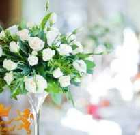 Организация свадьбы бизнес план