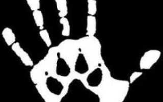 Права по защите животных в россии