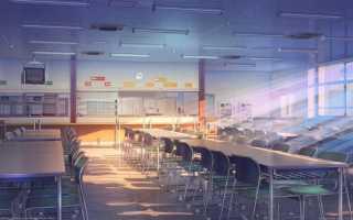Отличие школы от гимназии в россии