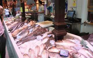 Рыбный магазин бизнес план бесплатно