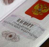 Эссе двойное гражданство плюсы и минусы