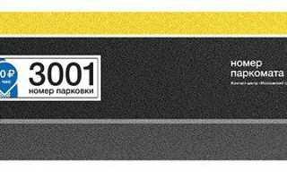 Пользование паркоматом в москве