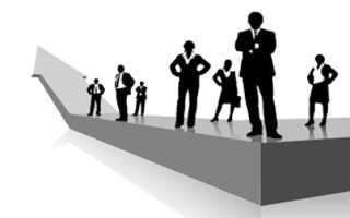 Что нужно чтобы стать финансовым директором