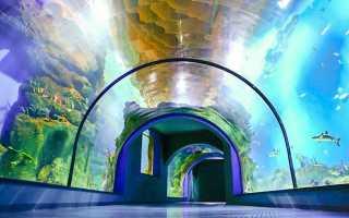 Самый большой океанариум москва адрес