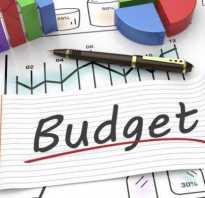 Бюджетный период понятие и виды