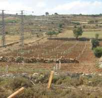 Выкуп земель сельскохозяйственного назначения