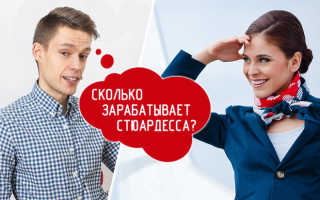 Сколько зарабатывает стюардесса в россии