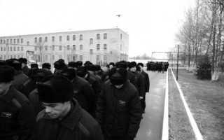 Какая разница между тюрьмой и колонией