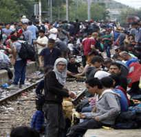 Чем отличается беженец от вынужденного переселенца